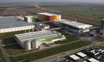 HEINEKEN España e Iberdrola firman un acuerdo para elaborar sus productos con energías 100% renovables
