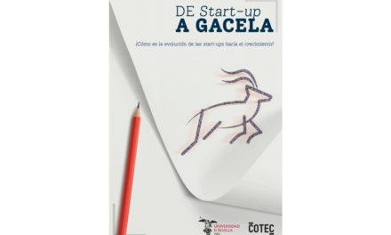 España dispone de 4.000 empresas gacela o de alto crecimiento, según un informe de COTEC y la Universidad de Sevilla