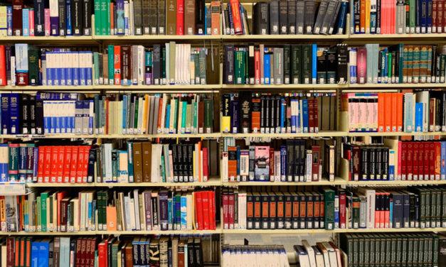 Una nueva propuesta de «Bibliotecasa» en «Afundación en casa»