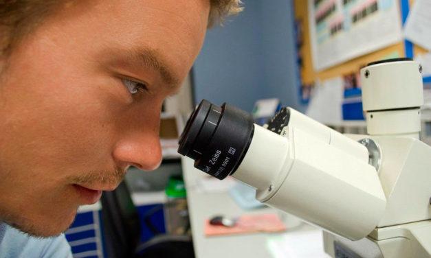 La AECC debate con grandes investigadores cómo está afectando el coronavirus a la investigación en cáncer