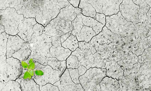 Implicaciones económicas del cambio climático, clases magistrales de Xavier Labandeira en CaixaForum Madrid