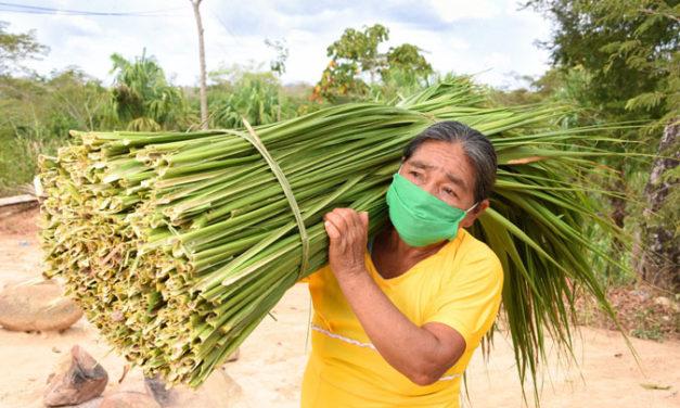 Fundación Microfinanzas BBVA, primera del mundo en contribución al desarrollo para la igualdad de género, según la OCDE