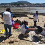 Voluntarios convocados por Afundación retiran 177 kilos de basura marina de las playas de Cortegada