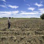 La FMBBVA desembolsó 20,6 millones de dólares en 2020 para ayudar a personas vulnerables a afrontar el cambio climático