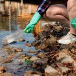 Lento y desigual avance de la cultura ecológica europea en la última década